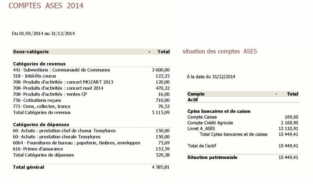 Ases - Comptes financiers 2014